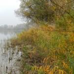 Man kann bis ans Wasser, aber zum Glueck sind die Ufer nicht ueberall zugaenglich