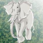 Elefant schiessen
