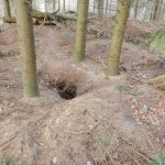 Fuchs- und Dachsbau