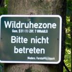 Wildruhezone im Deister