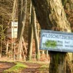 Noch eine Variante. Für Schilder im Wald sind der gestalterischen Fantasie wohl keine Grenzen gesetzt.